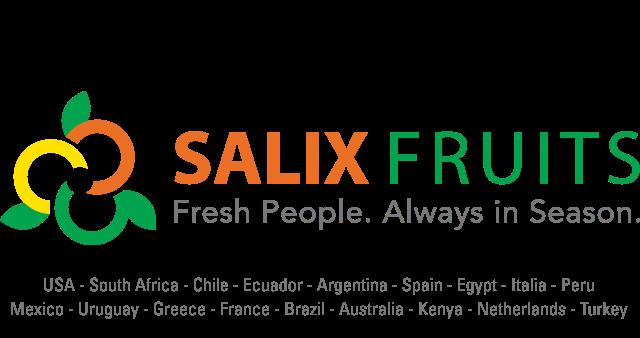 Salix Fruits